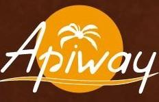 Déménageur Apiway