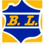 Déménageur BL Transports
