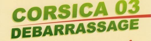 Déménageur Corsica 03