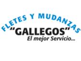 Empresa de mudanzas F. Gallegos