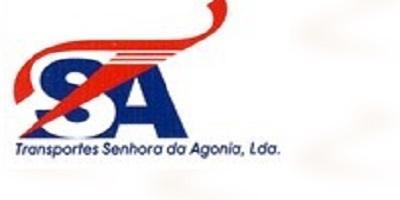 Moving company Transportes Senhora da Agonia,Lda